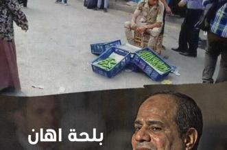 بلحة أهان كرامة مصر